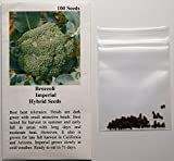 David's Garden Seeds Broccoli Imperial 3041SV