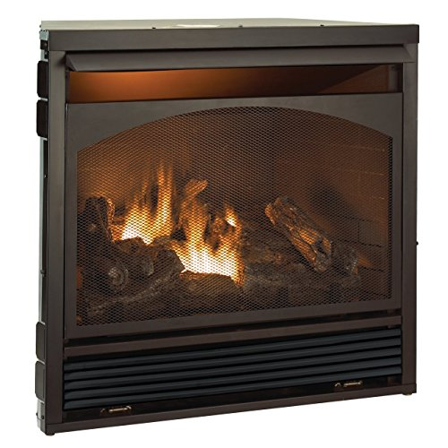 Ventless Fireplace Insert (Duluth Forge Fuel Vent Free Fireplace Insert, Remote Control, 32000 BTU)