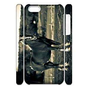 Cell phone 3D Bumper Plastic Case Of Horse For iPhone 5C