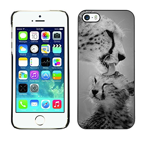 Plastic Shell Protective Case Cover || Apple iPhone 5 / 5S || Big Cat Black White Nature @XPTECH