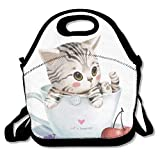 Best PackIt Ladies Lunch Bags - Bunny Insulated Lunch Bag Bag Travel School Picnic Review