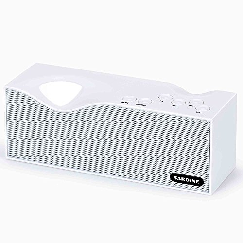 Bluetooth Speakers, Portable Wireless Stereo Speaker with Built-in Microphone Support Hands-free Function, FM Radio, 2x5W Acoustic Drivers, 12 Hours Playtime