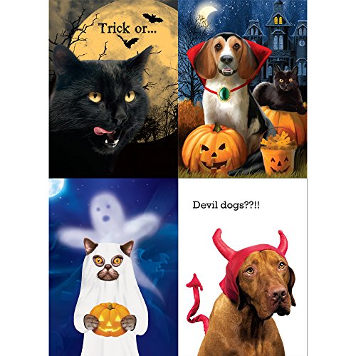 Tree-Free Greetings Pet Halloween Card Assortment, 5 x 7 Inches, 8 Cards and Envelopes per Set (GA31681)
