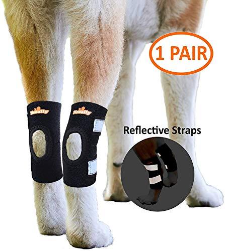 NeoAlly Dog Leg Brace