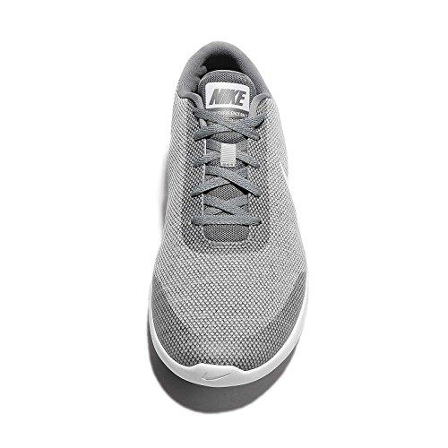 NIKE Herren Flex Experience Laufschuh Wolf Grey / Weiß-cooles Grau