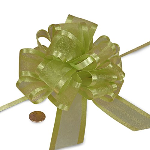 - Green Sheer Pull Bow with Satin Edges 4