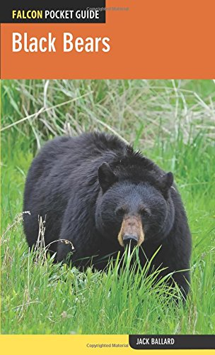 (Black Bears (Falcon Pocket Guides))