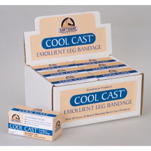 Horse Cast (HAWTHORNE PRODUCTS 4 348074 Cool Cast Emollient Leg Bandage, 4
