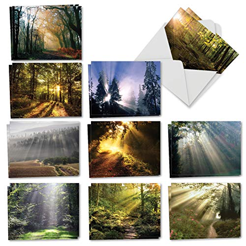 Blank Note Cards Envelopes - Shining Through - 20 Beautiful Blank Note Cards with Envelopes (4 x 5.12 Inch) - Boxed Assortment of All-Occasion Outdoor Landscape Greetings - Bulk Notecard Set (2 Each, 10 Designs) AM1735OCB-B2x10