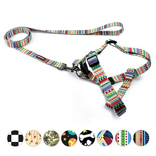 QQPETS Escape Proof Dog Harness and Leash Set Pet No-Pull Dog Harness Back Clip for Extra Small XS Puppy Breed Chest Girth 12-18