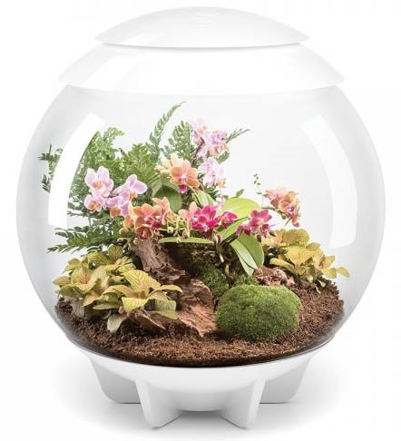 (BiOrb Air White 60L Terrarium)