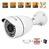 HOSAFE 1MB6 HD IP Camera Outdoor 1MP 1280x720P Night Vision ONVIF H.264 Motion Detection Email Alert Remote View Via Smart Phone/Tablet/PC For Sale