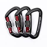 Sumder 3PCS D-ring Locking Climbing Carabiner Aluminum Dark Gray