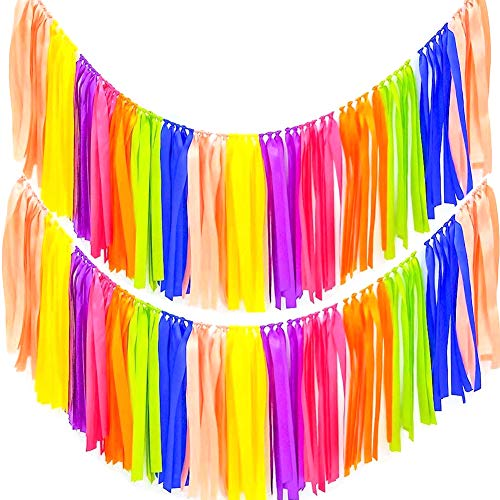 AZOWA 2 Pack Rainbow Ribbon Tassel Garland Assembled Colorful Handmade Fabric Fringe Banner Hanging Decor for Wedding Nursery Bridal Shower Party Decorations (40 in (L) X 14 in (H), Rainbow Color)