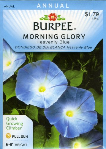 Burpee 44107 Morning Glory Heavenly Blue Seed Packet