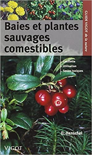 Baies et plantes sauvages comestibles. Vigot