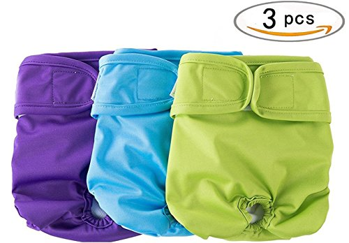 3 Pcs/set Female Dog Diapers Washable & Resuable for Girl...
