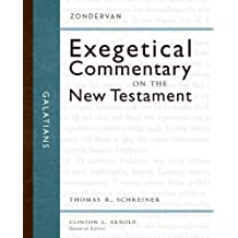Galatians (Zondervan Exegetical Commentary on The New Testament series Book 9)