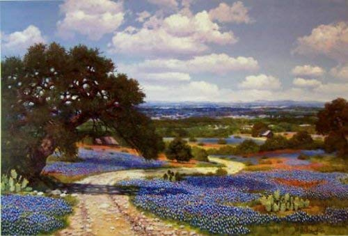 W.A. Slaughter Limited Edition Canvas Transfer Art Print - Texas Bluebonnet Country - Signed and Numbered - 20