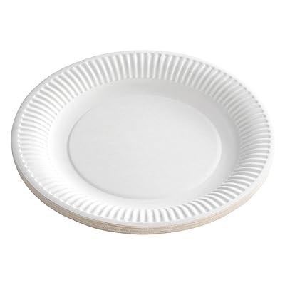 100 platos/platos desechables/platos Color Blanco, redondo, diámetro 23 cm, respetuoso con el medio ambiente Compostable, versátil de Gastro de requisitos de bien Heil®: Juguetes y juegos