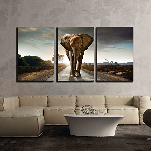 wall26 - 3 Piece Canvas Wall Art - Single Elephant Walking in a Road with the Sun from Behind - Modern Home Decor Stretched and Framed Ready to Hang - 24