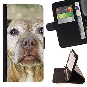 Momo Phone Case / Flip Funda de Cuero Case Cover - Pit Bull Terrier americano perro Arena Marrón; - LG Nexus 5 D820 D821
