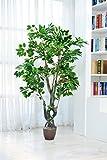 Youz Artificial Ficus Tree Large Silk Green Leaves Indoor Ourdoor Plant, 5.65-Feet Green No Pot(950#)