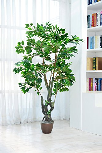 Artificial Ficus Tree with Large Silk Green Leaves Indoor Ourdoor Plant, 5.65-Feet Green, With No Pot(950#) -