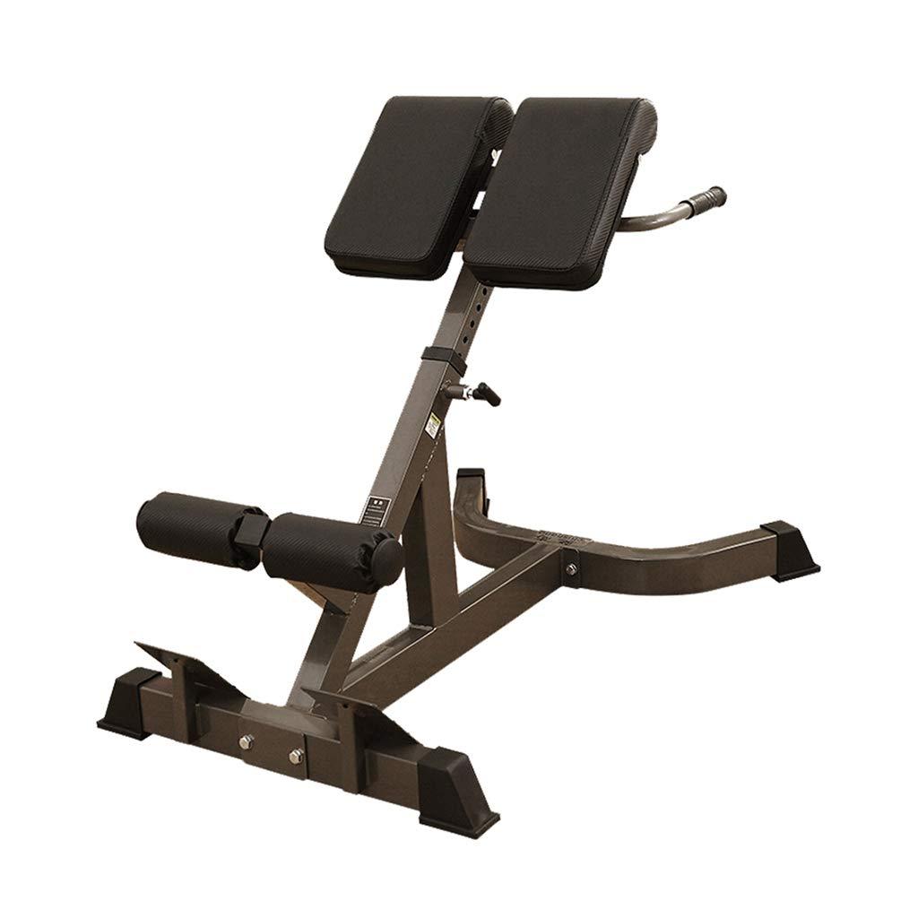 Fitness-Stuhl-römischer Stuhl-Eignungs-Ausrüstung Handelshaus-Multifunktionsroman-Schemel-Ziege, die Oben Taillen-Regal Steht Hantelbänke