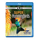 Image of NATURE: Super Hummingbirds Blu-ray