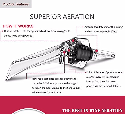 LE FLEUR Wine Aerator Pourer Decanter and Wine Stopper Set - Perfect Gift for Wine Lovers - Cellar Door Selections by Cellar Door Selections (Image #3)