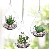 MyGift Set of 3 Teardrop Design Hanging Glass Faux Succulent Container Vases/Artificial Plant Terrarium Pots