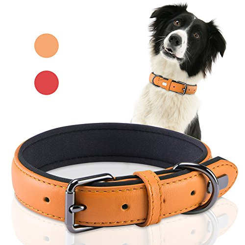 (PETBABA Leather Dog Collar, Soft Padded Collar with Metal Buckle, Suitable Medium Big Pet in Orange)