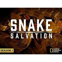 Snake Salvation  Season 1