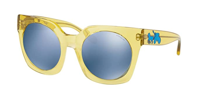 a2c5fc850a83 Sunglasses Coach HC 8250 55241U YELLOW TRANS at Amazon Men's ...