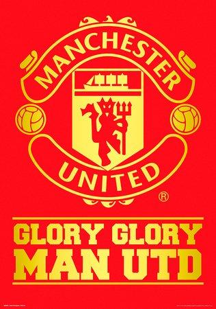 Con El Escudo Del Manchester United Poster De Aluminio 47 X