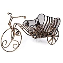 Flii Iron Tricycle Shape Wine Bottle Holder Storage Display Rack Stand,copper