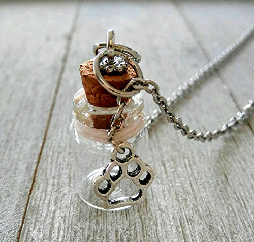 Pet Loss Gifts Pet Memorial Jewelry Memory Pet loss Necklace Lock of Hair Necklace Loss of Pet Sympathy Gift Jewelry Dog Cat Keepsake Glass Jar Charms ()