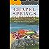 Chapel Springs Survival (Chapel Springs Series Book 2)