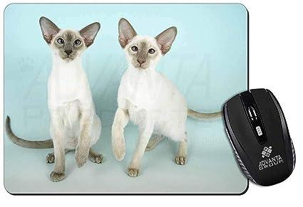 Due Gatti Siamesi Tappetino Mouse Del Computer Pad Regalo Di Natale