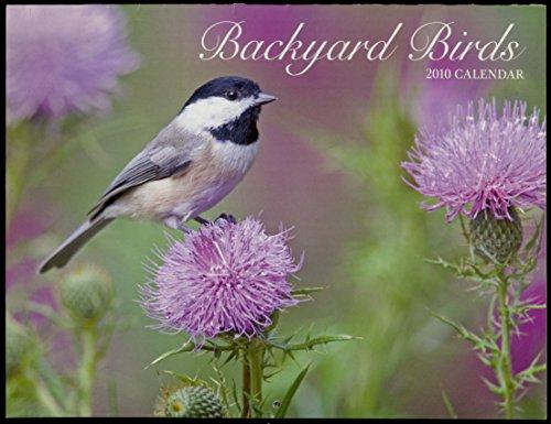 Backyard Birds 2010 Calendar - 12 Months of Birds and Children