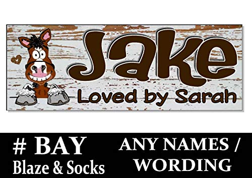 Adonis554Dan Bay White Blaze and Socks Cartoon Horse Pony Name Stable Door Tack Room Plaque Sign Personalized Custom Wood Effect