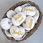 besttoyhome 12 PCS Assorted Sizes Rustic Harvest White Artificial Pumpkins for Halloween, Fall Thanksgiving Decorating Harvest Embellishing and Displaying