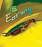 Earwig (Bug Books)