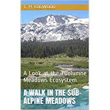 A Walk in the Sub-Alpine Meadows: A Look at the Tuolumne Meadows Ecosystem