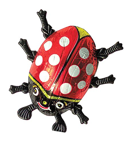 Storz Chocolate Large Solid Ladybug Candy 75 pcs per box, 0.44 Ounce by Storz Chocolate