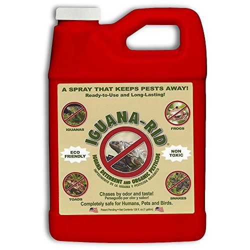 Iguana Rid Ready to Use Pest Control Refill Pack, 1-Gallon -  Pest Rid Products, IR1001G