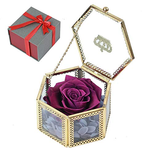 - Purple Preserved Roses, Handmade Preserved Rose Present, Exquisite Fresh Roses Upscale Immortal Flowers Best Gift for Female Birthday, Anniversary, Christmas (Hexagon Purple)