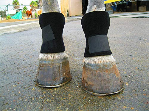 Equipro Bedsore Boots for Horses