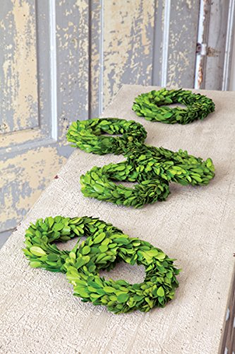 Mini Perserved Boxwood Wreaths (S/6) -